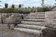Natural stone steps surrounded by a tiered Flamboro Dark armourstone wall and gardens